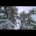 VIDEO<BR>The Longest Winter