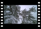 VIDEOThe Longest Winter